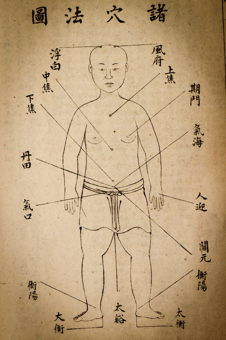 Ancient Acupuncture with Freya Sherlock