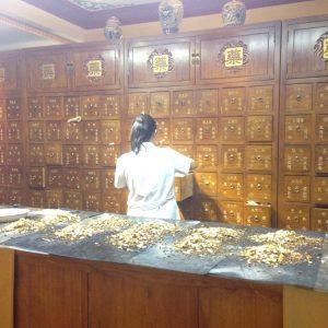 The herbal dispensary
