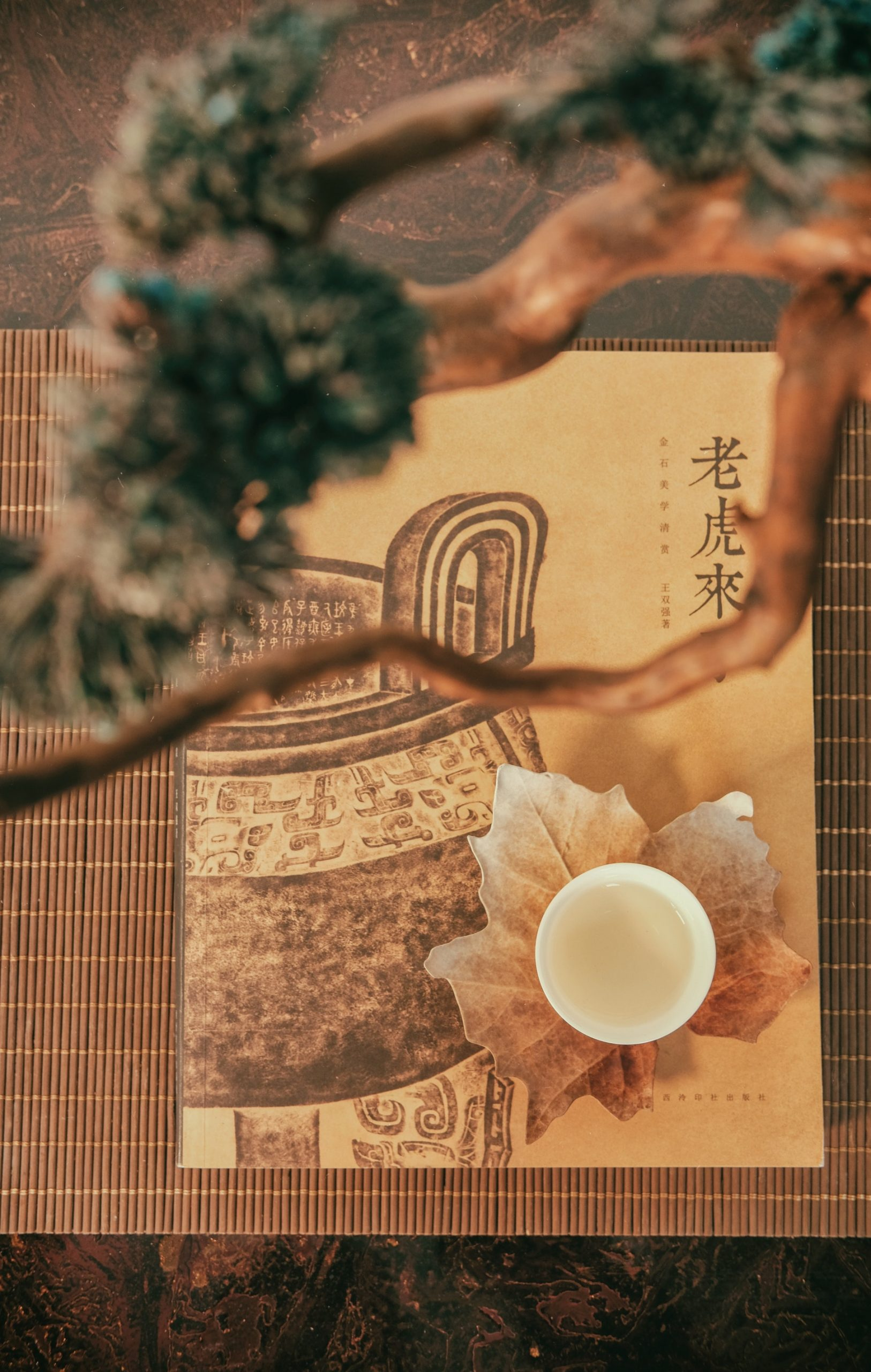 Chinese Medicine pattern